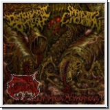 DISFIGUREMENT OF FLESH/PARASITIC EJACULATION - Split EP (yellow)