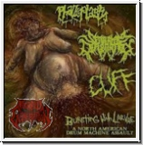 V.A.BURSTING WITH LARVAE - Phalloplasty,Seraphim Defloration,Cuf